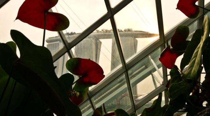 Singapore delle meraviglie